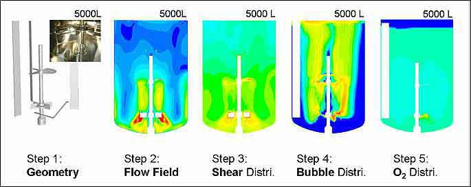 Steps of CFD Simulation